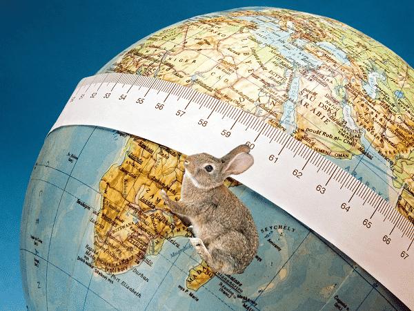 Tierra y conejo