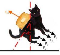 ¿Cómo hacen los gatos para caer siempre de pie? ¿Y las tostadas?