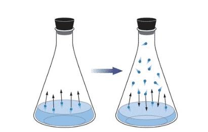 Equilibrio entre condensación y evaporación